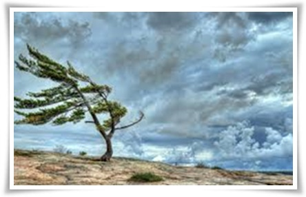 TPOTG-storm-across-the-bay-frame-01