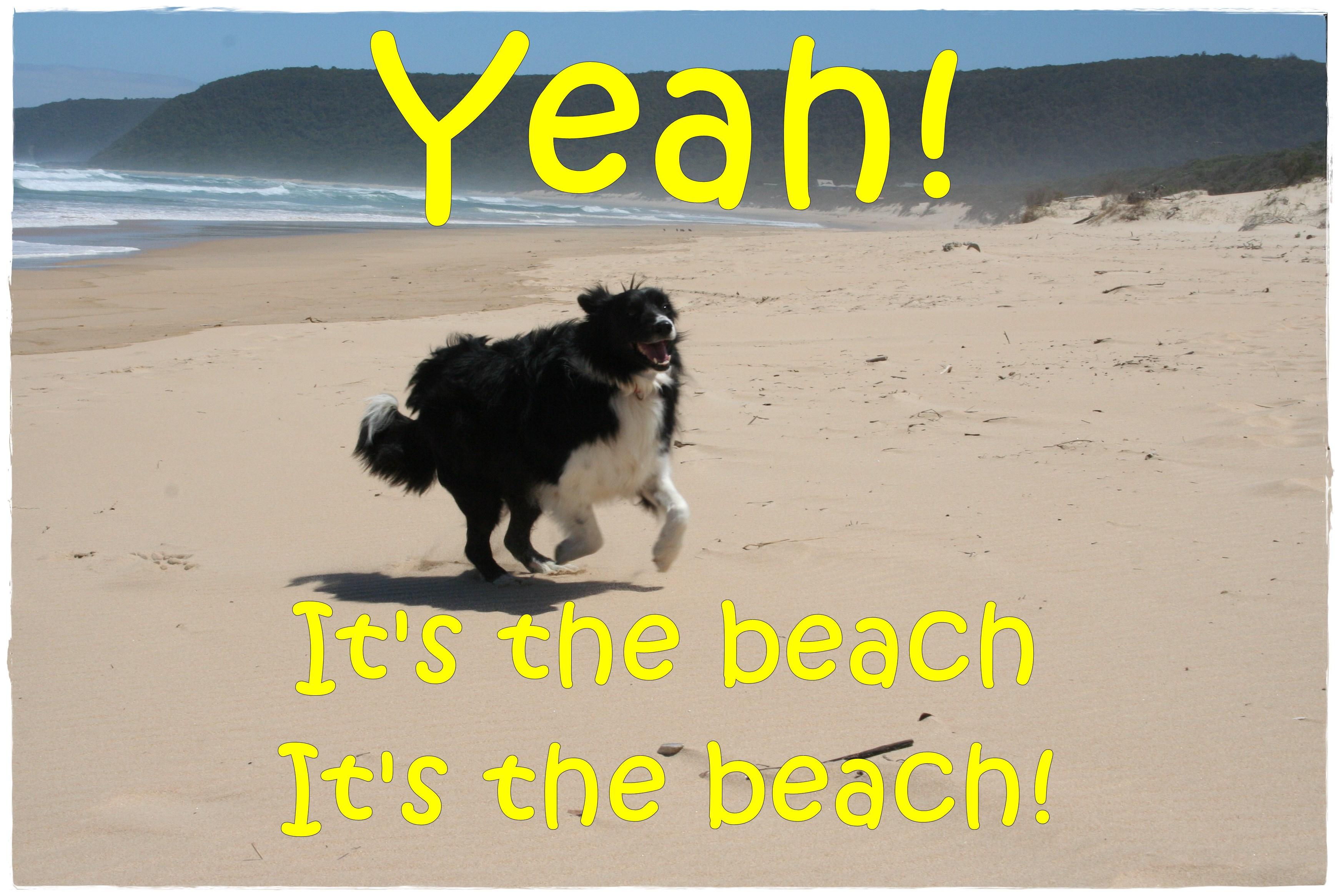 tpotg-jess-on-the-beach-01