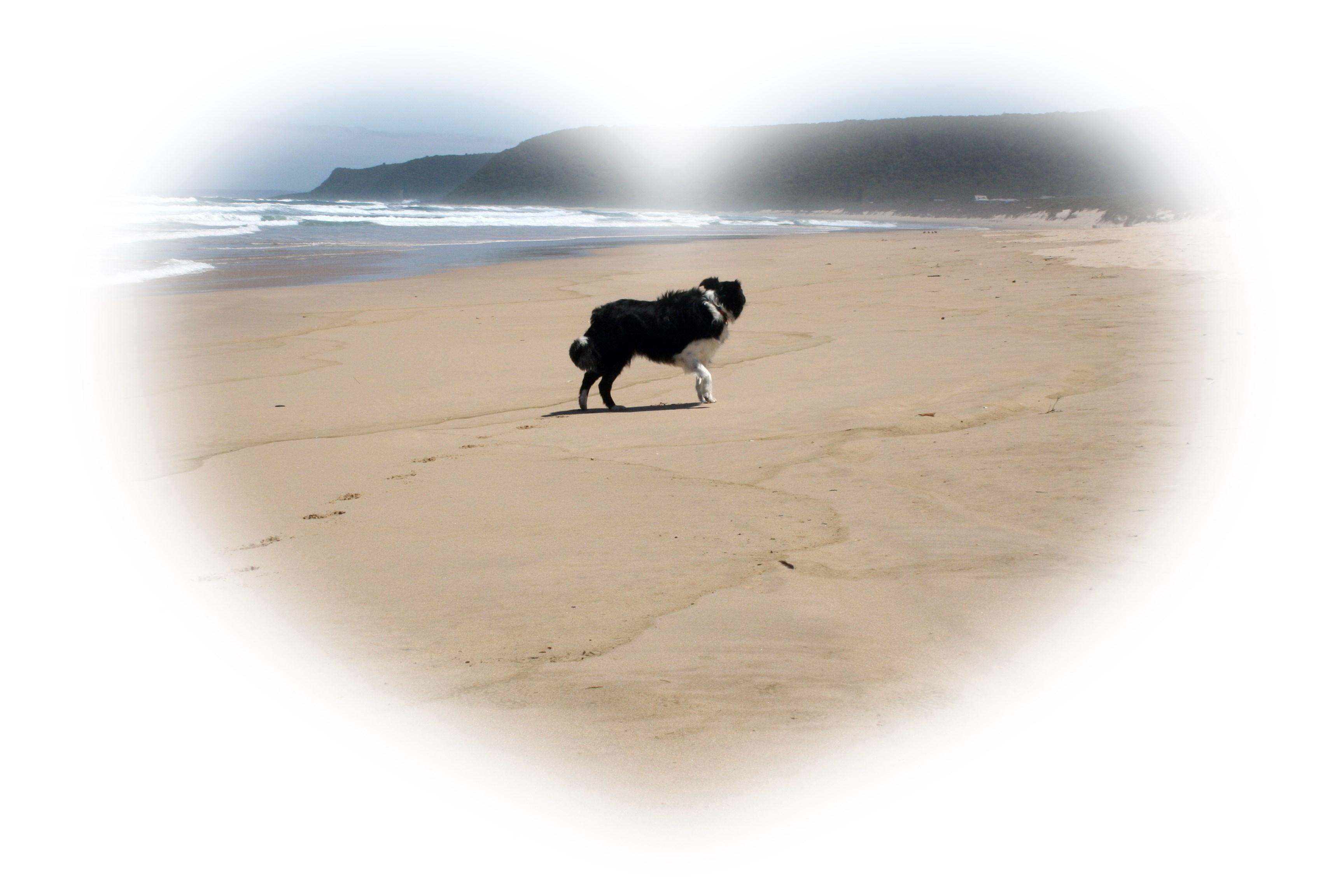 tpotg-jess-on-the-beach-02