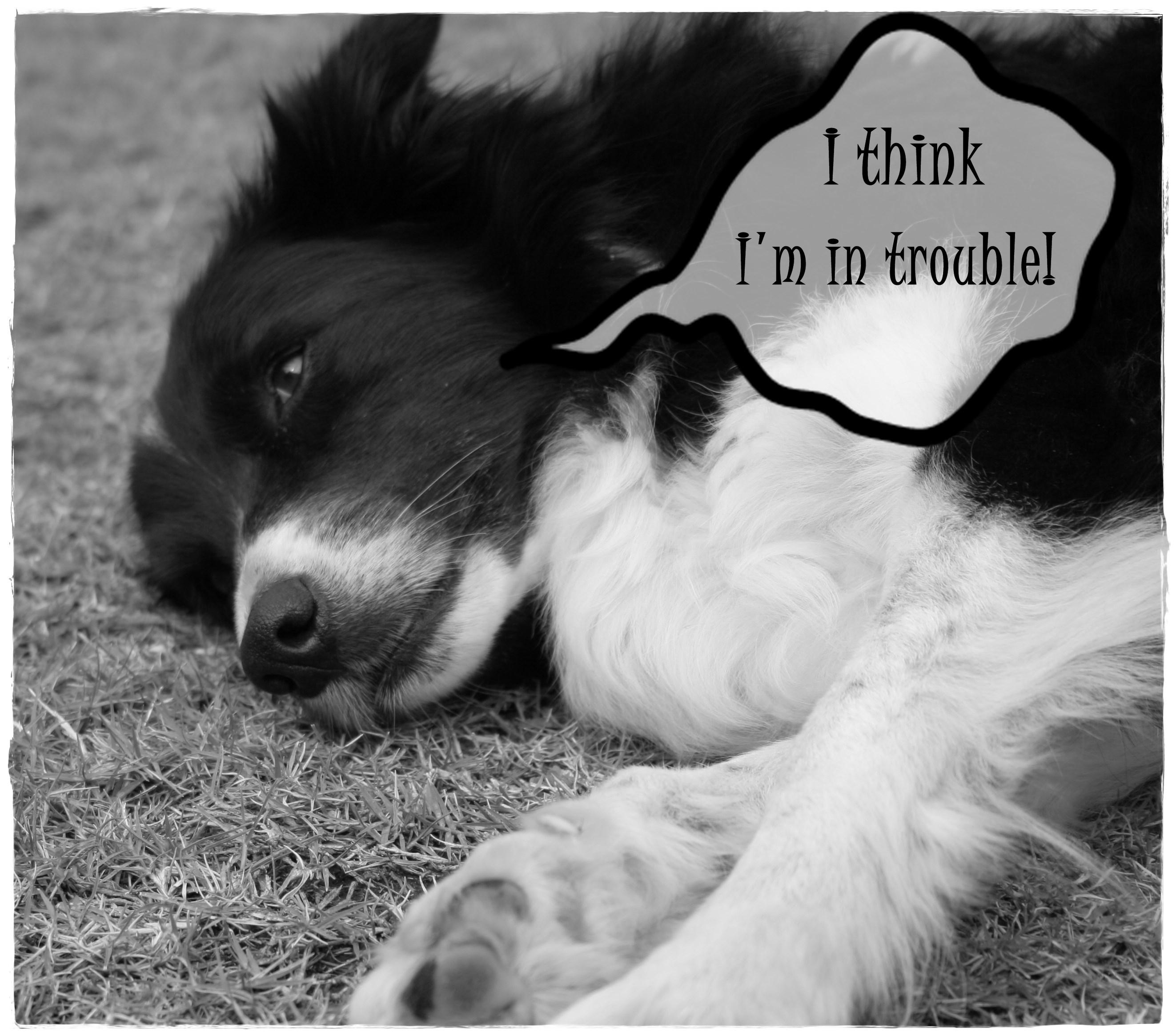 tpotg-jess-in-trouble-01