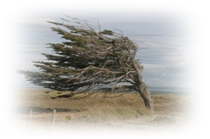 tpotg-berg-wind-frame-01